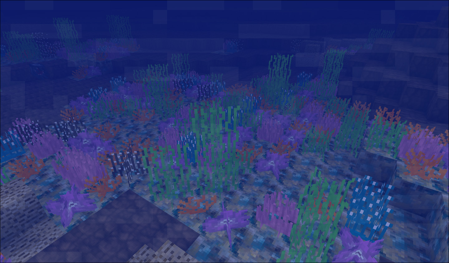 Coral reef mod 1 2 5